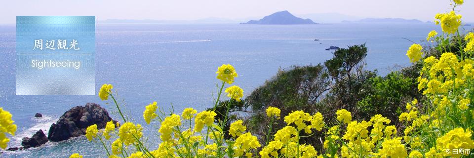 伊良湖岬周辺観光