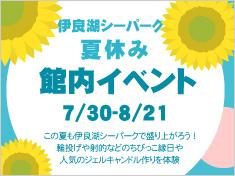 夏の館内イベント